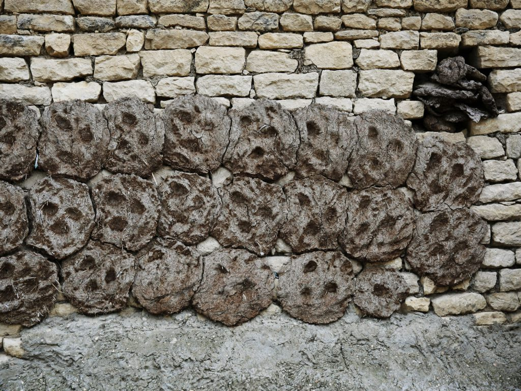 Cowpats dry on the walls, later to be used as fuel.  © gullivertheis.de